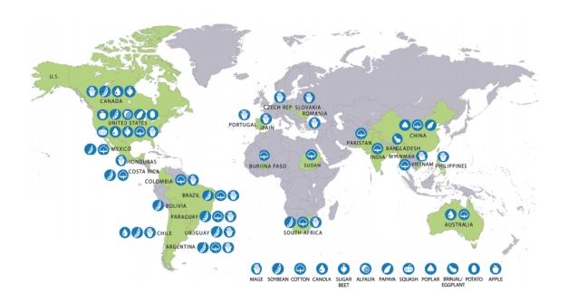 Mapa de distribució dels conreus d'OGM